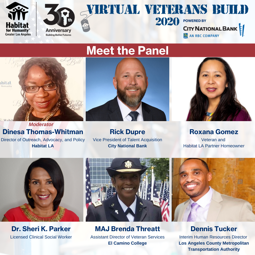 Graphic for the panel speaking during the Virtual Veterans Build